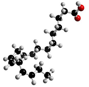 linolenic-acid